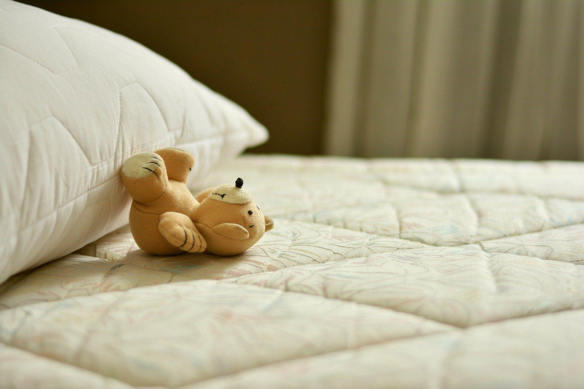 teddy-beddy